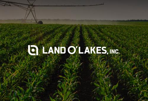 NetSuite帮助Land O'Lakes 业务实时运营可见性、加速了跨分支机构的全球财务合并
